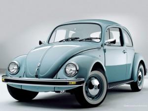 bug-2